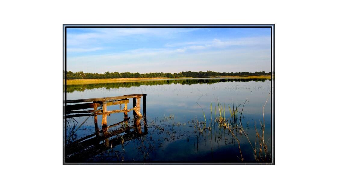 Le ponton d'or sur l'étang