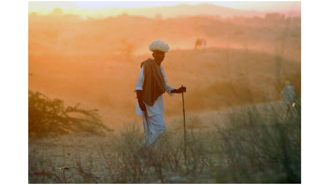 Le désert couleur couchant