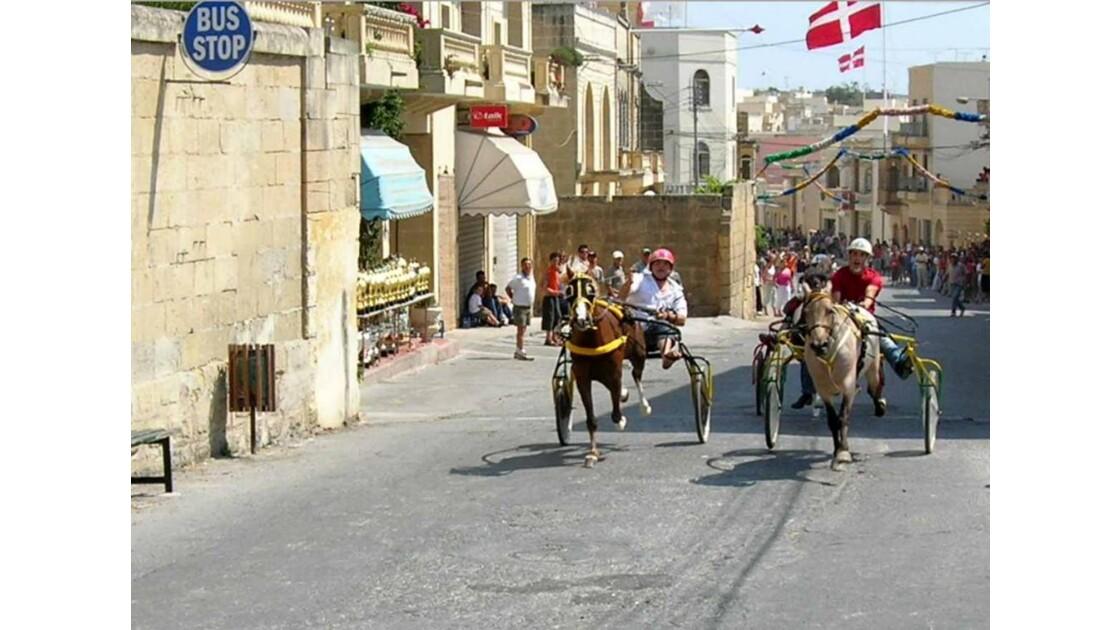 Ile de Gozo courses de chevaux 1