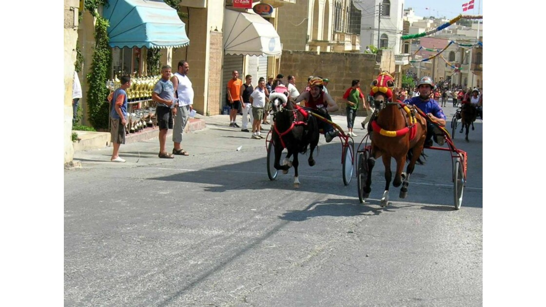 Ile de Gozo courses de chevaux 2