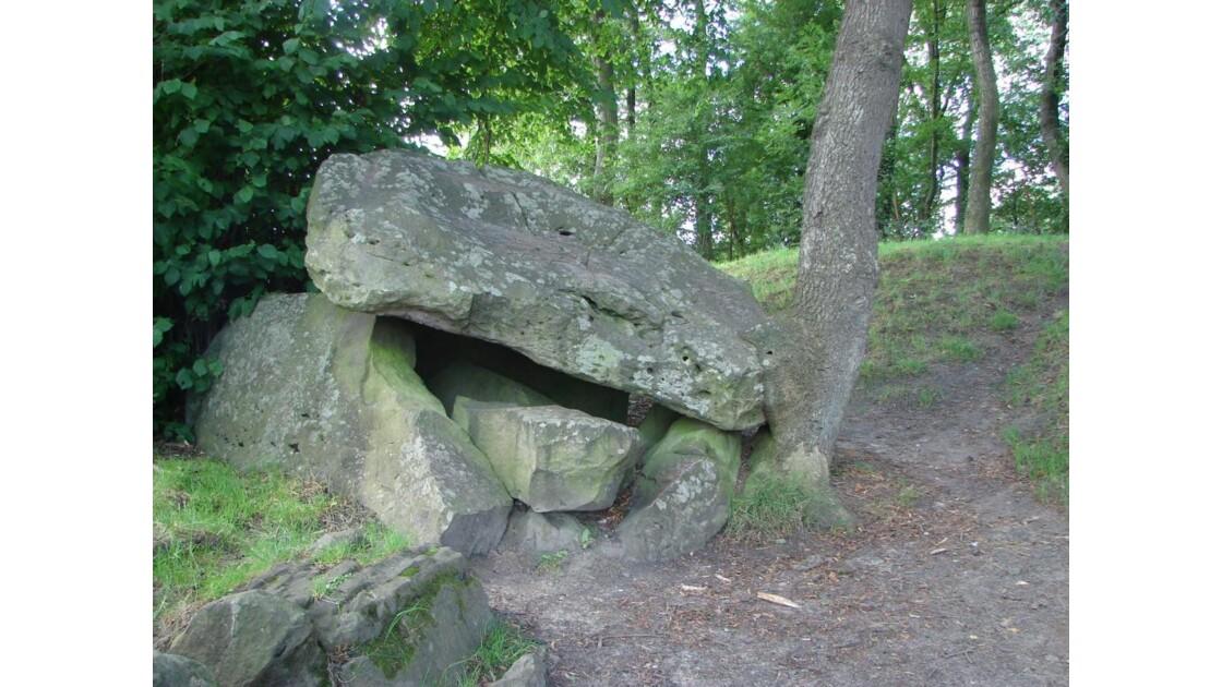 Tables des fées (Fresnicourt le dolmen)