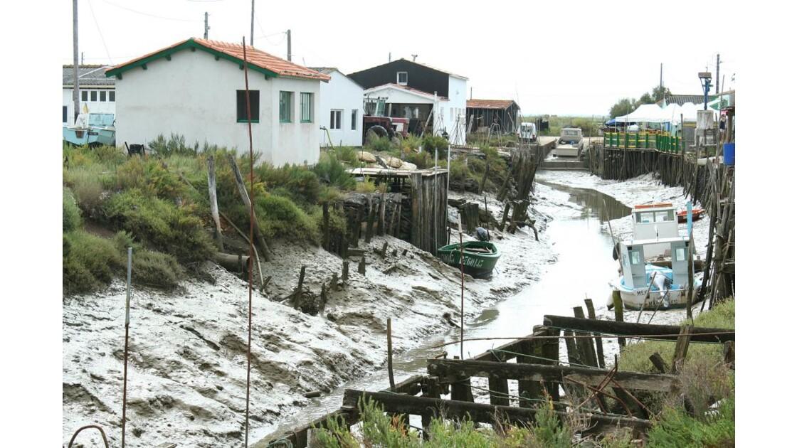 route des huîtres marée basse
