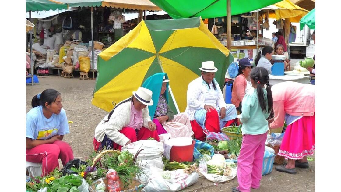 Equateur_du_12_au_26_03_2090_ICENA_381.
