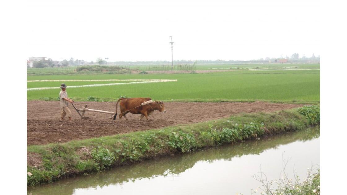 Vietnam__11___28_Mars_2010_580.jpg