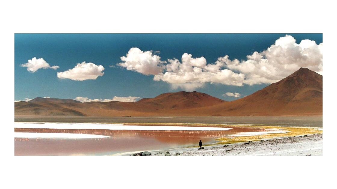 Laguna_Colorada_Plate_One.jpg