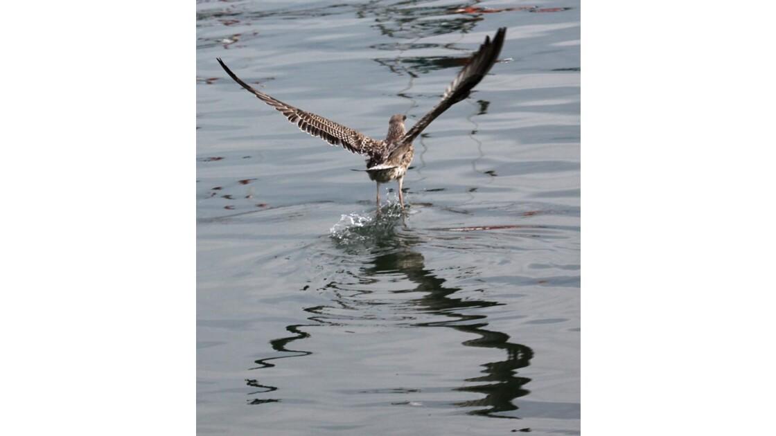 je marche sur l'eau!