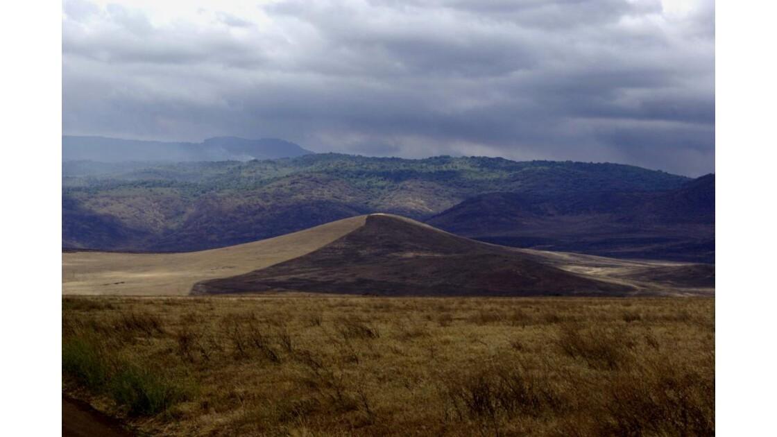 Plaine Tanzanie