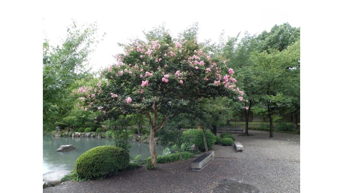 Jardin Tô-ji