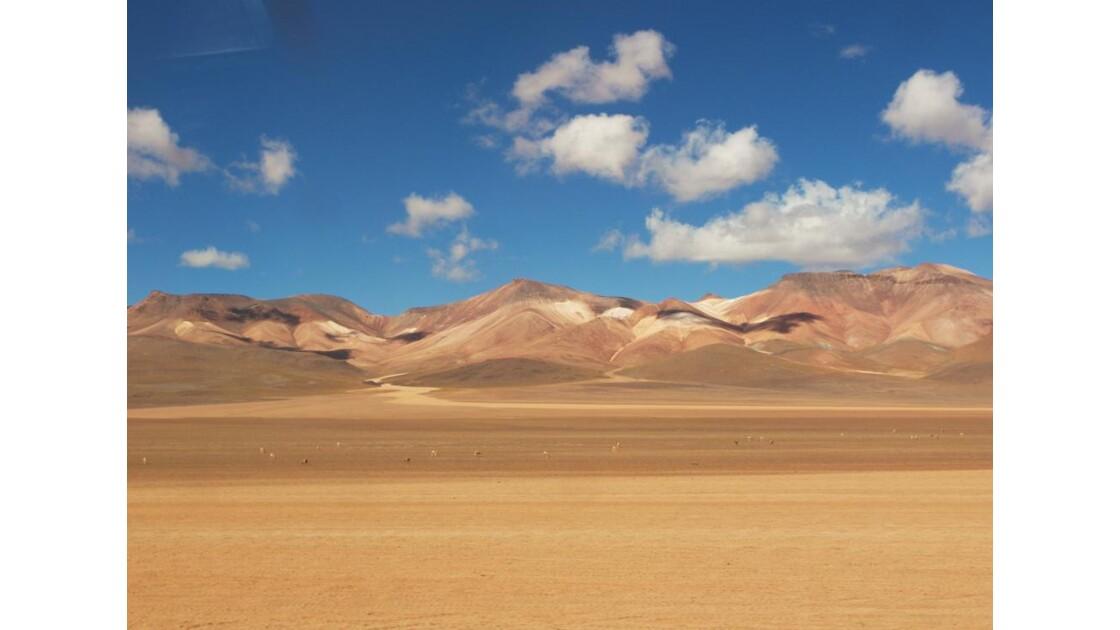Désert Bolivien - désert de Dali