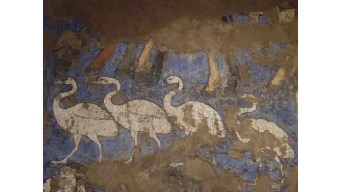 Samarcande Musée Afrosyab