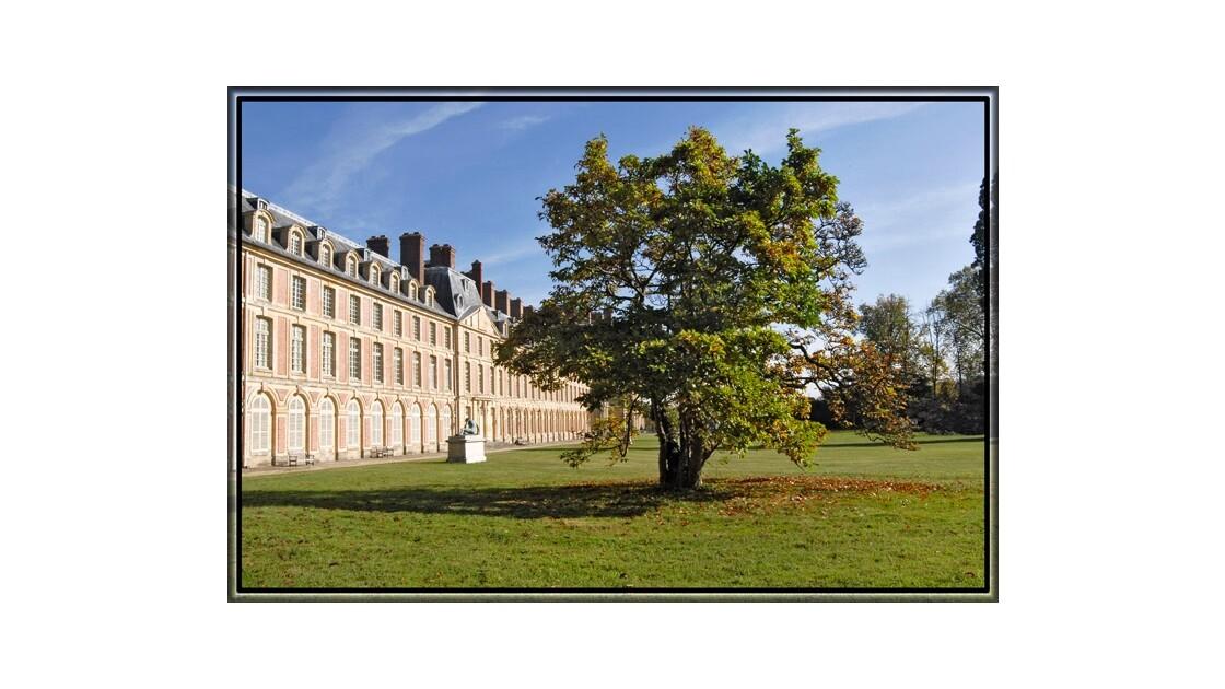 L'arbre et le chateau côté jardin anglai