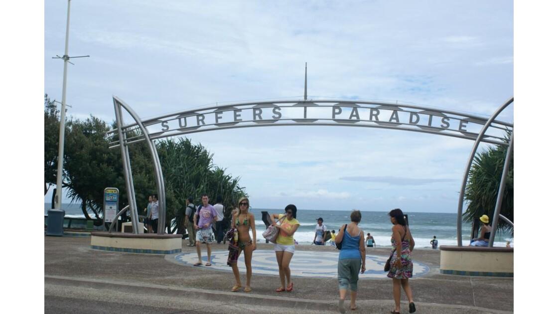 Surfer's Paradise 2