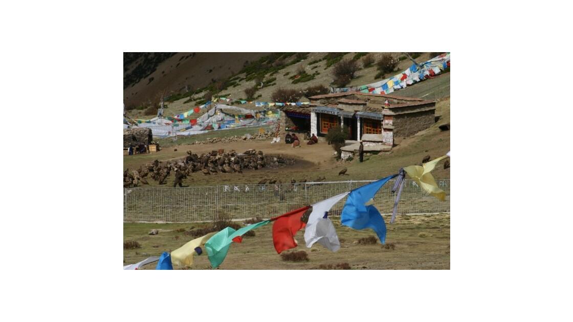Sky burial  au Tibet