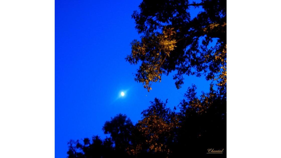 La lune et l' étoile