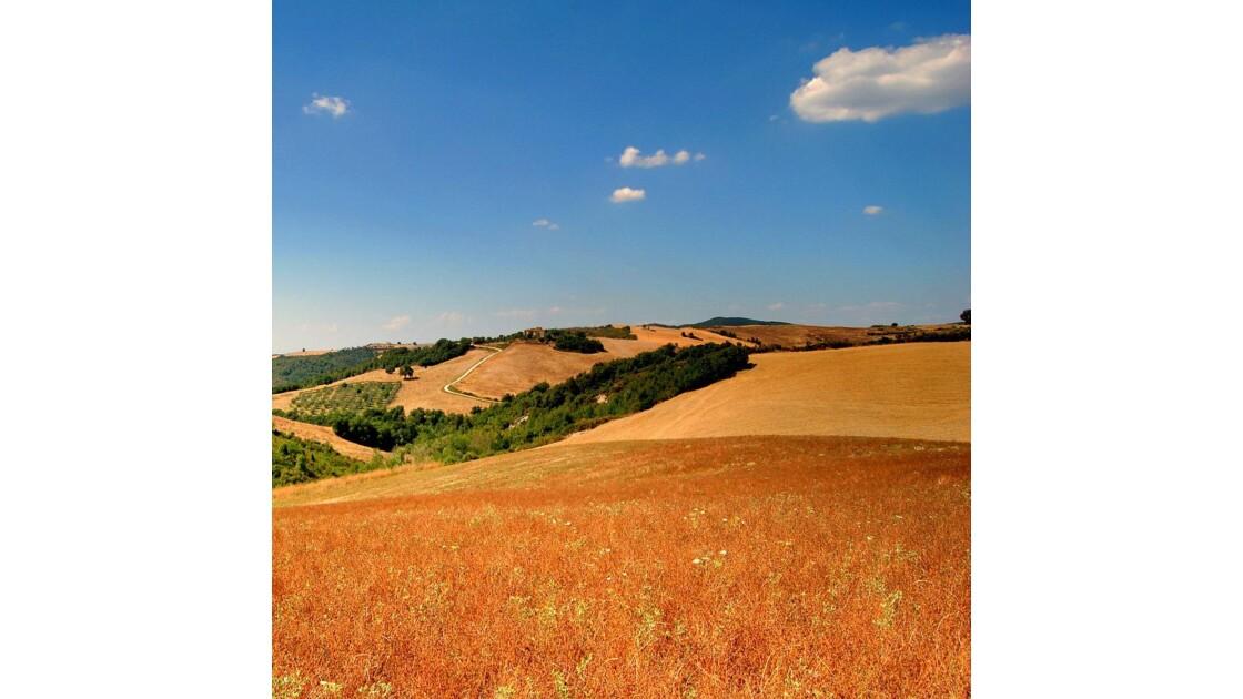 Toscane près de Voltera