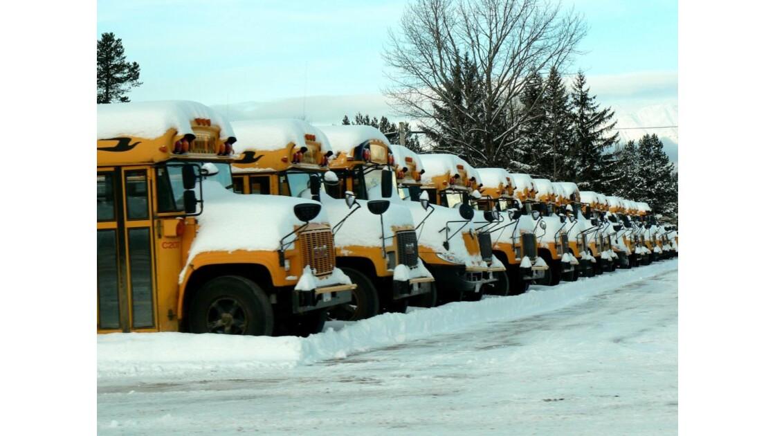 Bus scolaires - Terrace - Canada