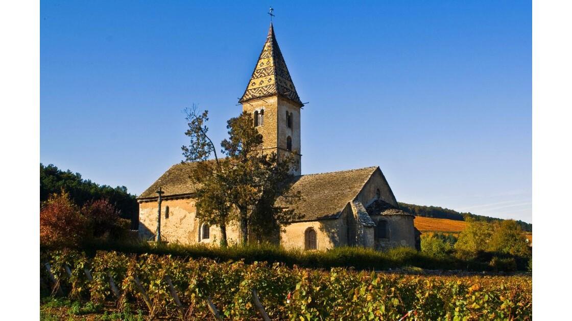 Les vignes de Bourgogne