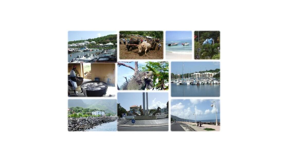 Mosaïque de Guadeloupe