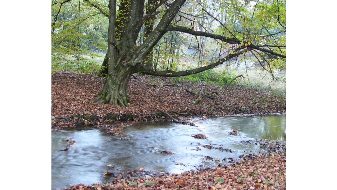 et au dessous coule une rivière