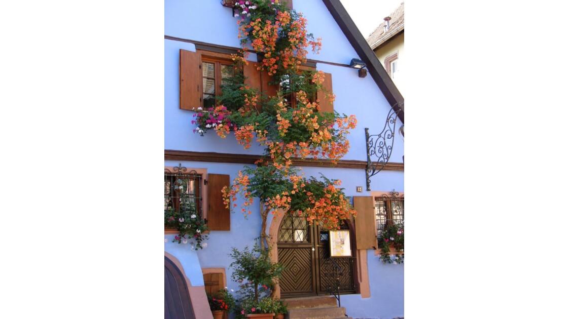 Façade fleurie (Riquewihr)
