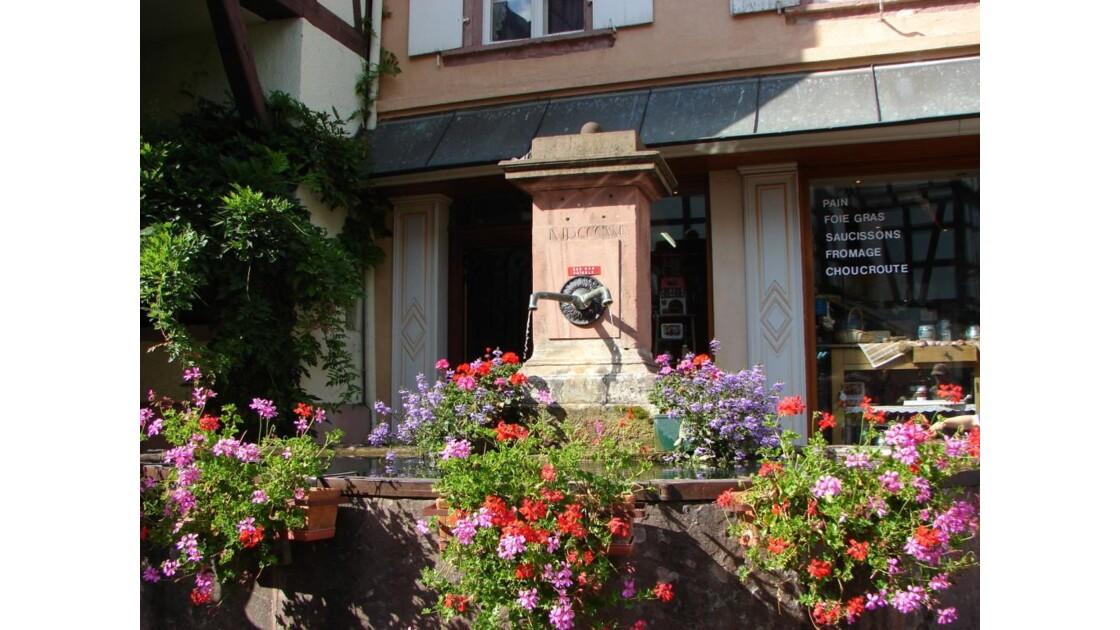 Fontaine fleurie (Riquewihr)