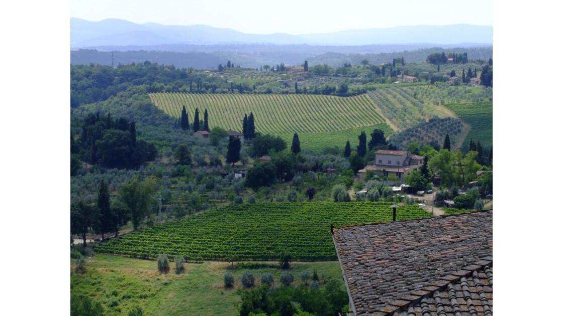 Le vignoble de San Gimignano