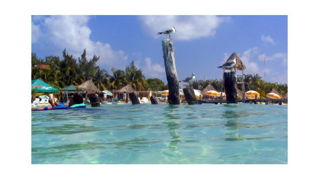 Playa , mucha playa