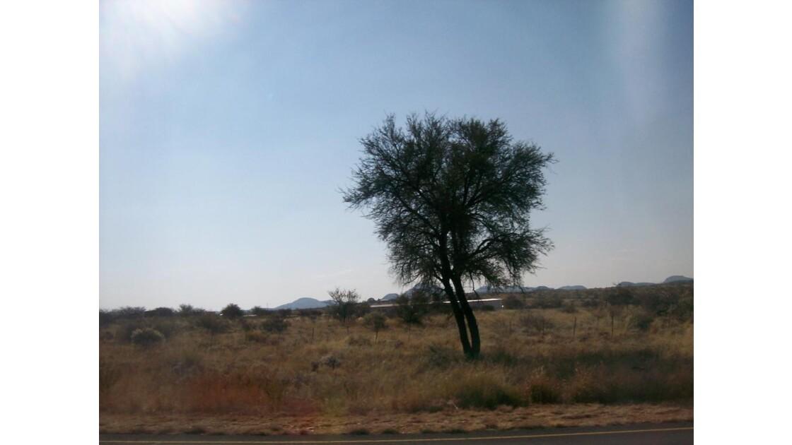 namibie2008_011.jpg