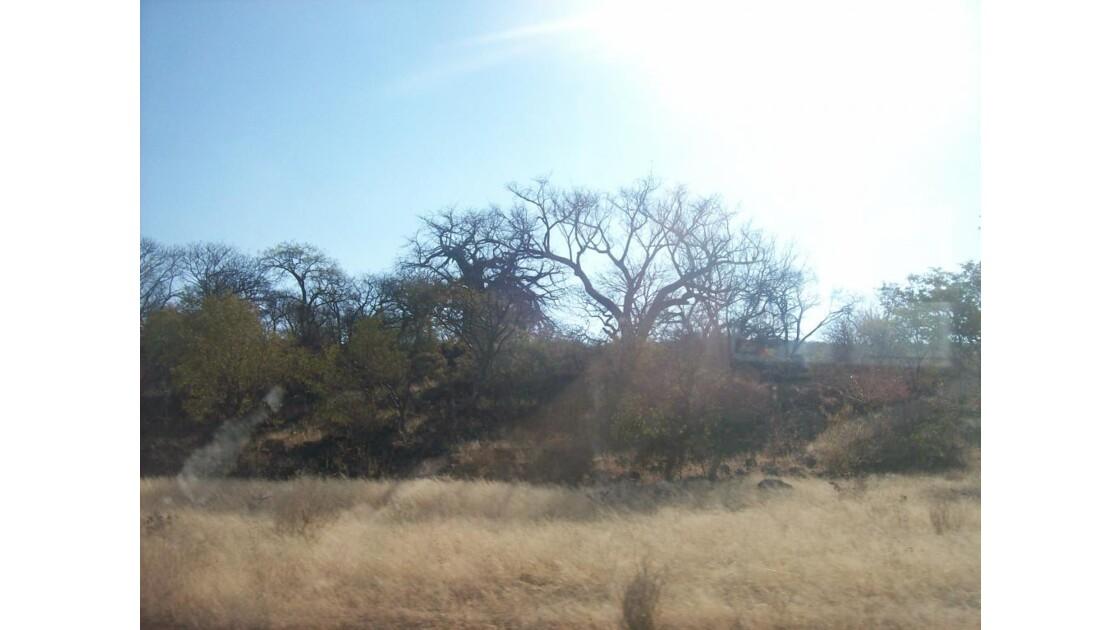 namibie2008_587.jpg