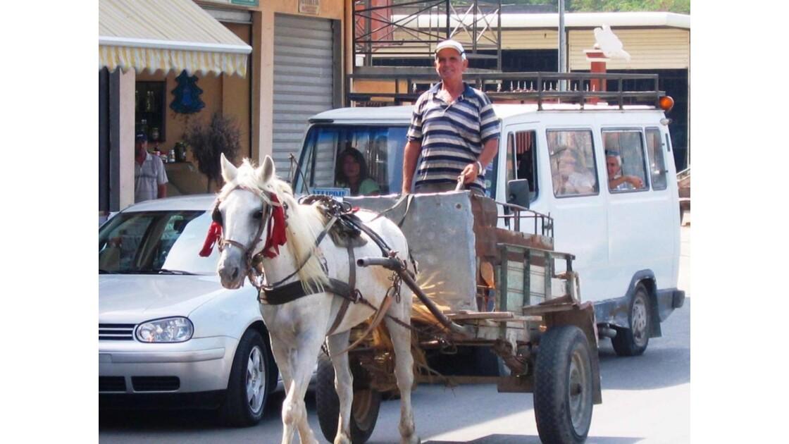 Albanie Shkoder Charrette à cheval