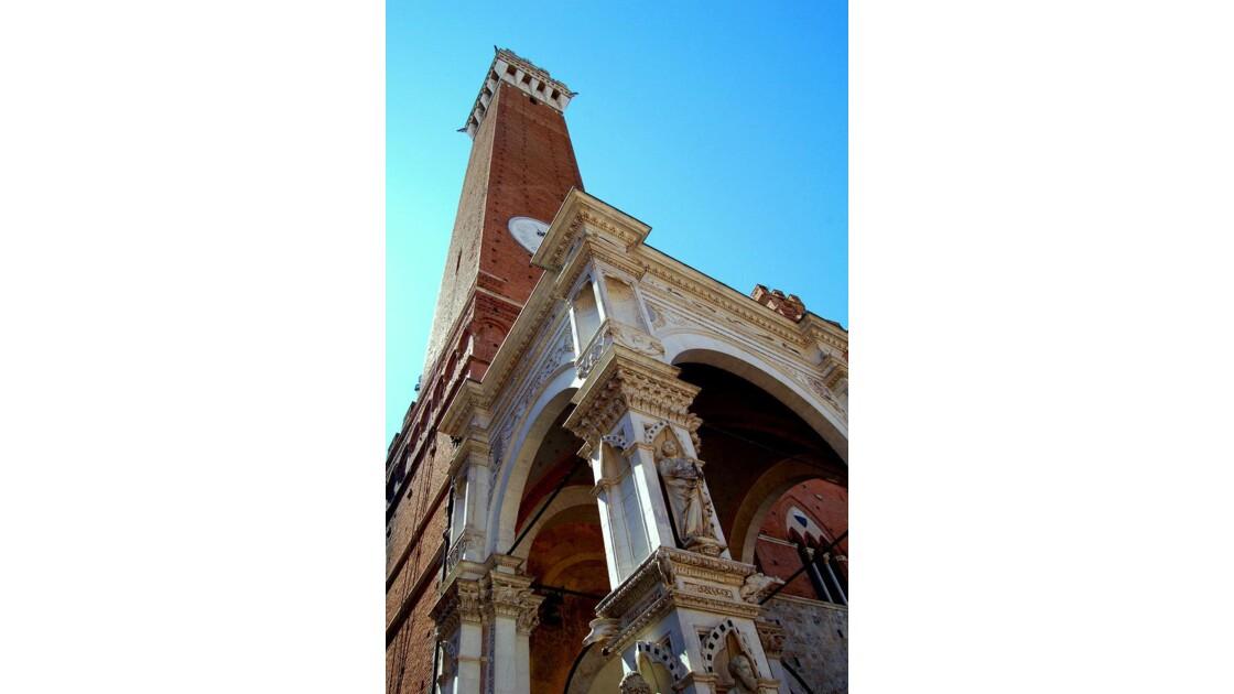 Sienne : Piazza del Campo(la tour)