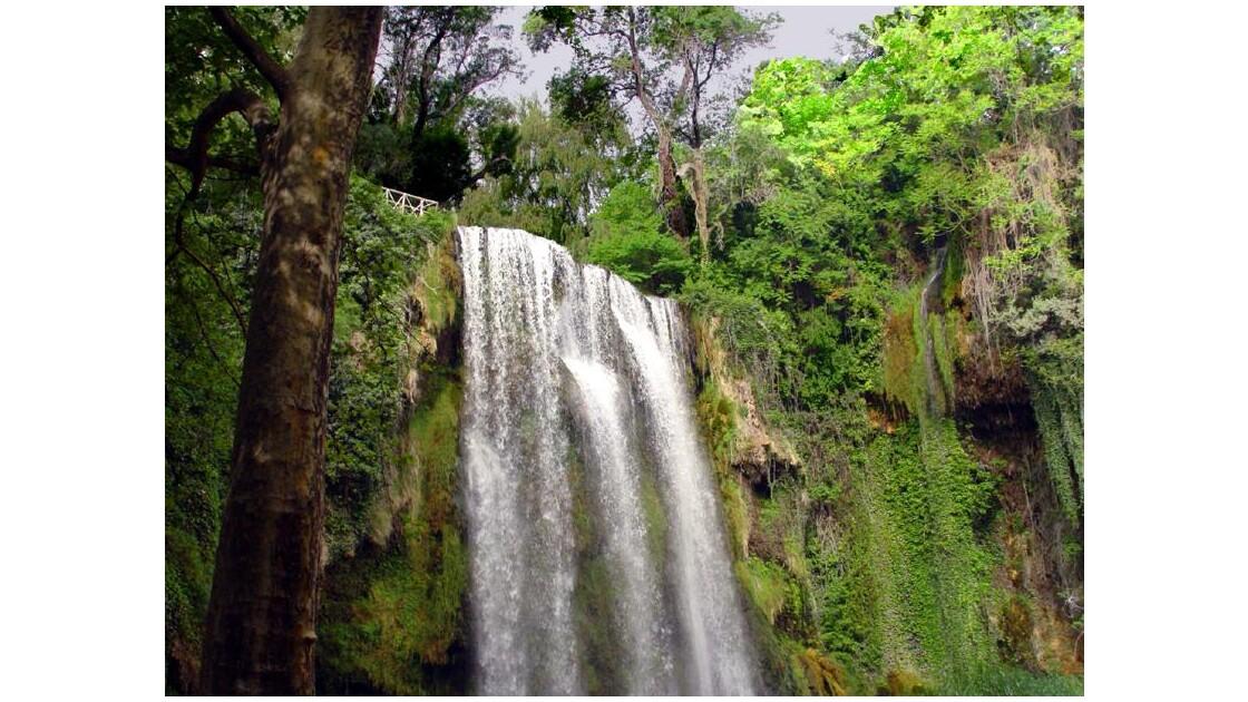 Dans le parc du Monastère de la Piedra