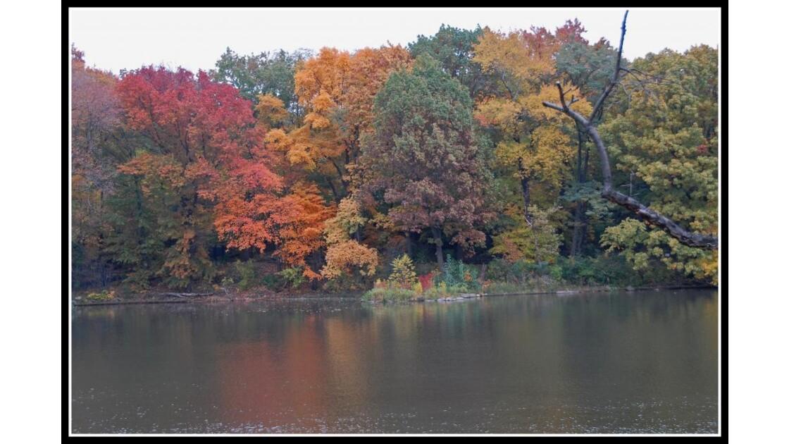 Central Park Riverside NYC