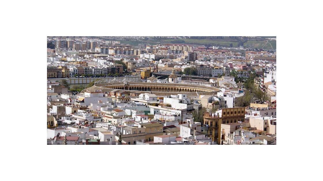 Les arènes de Seville