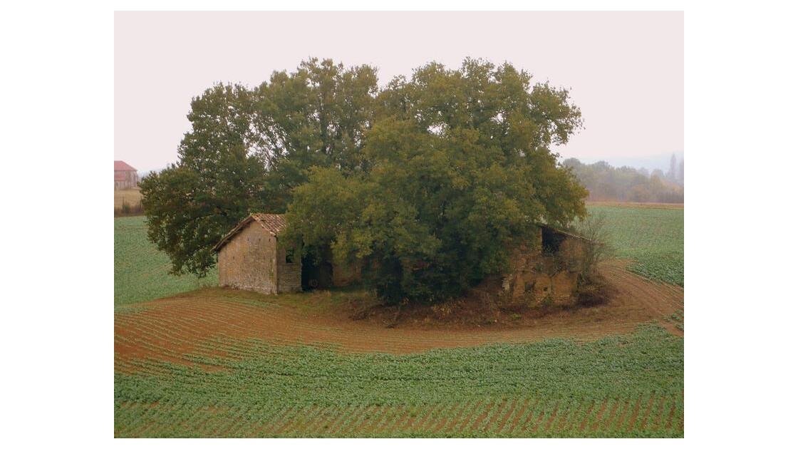 vieille ferme