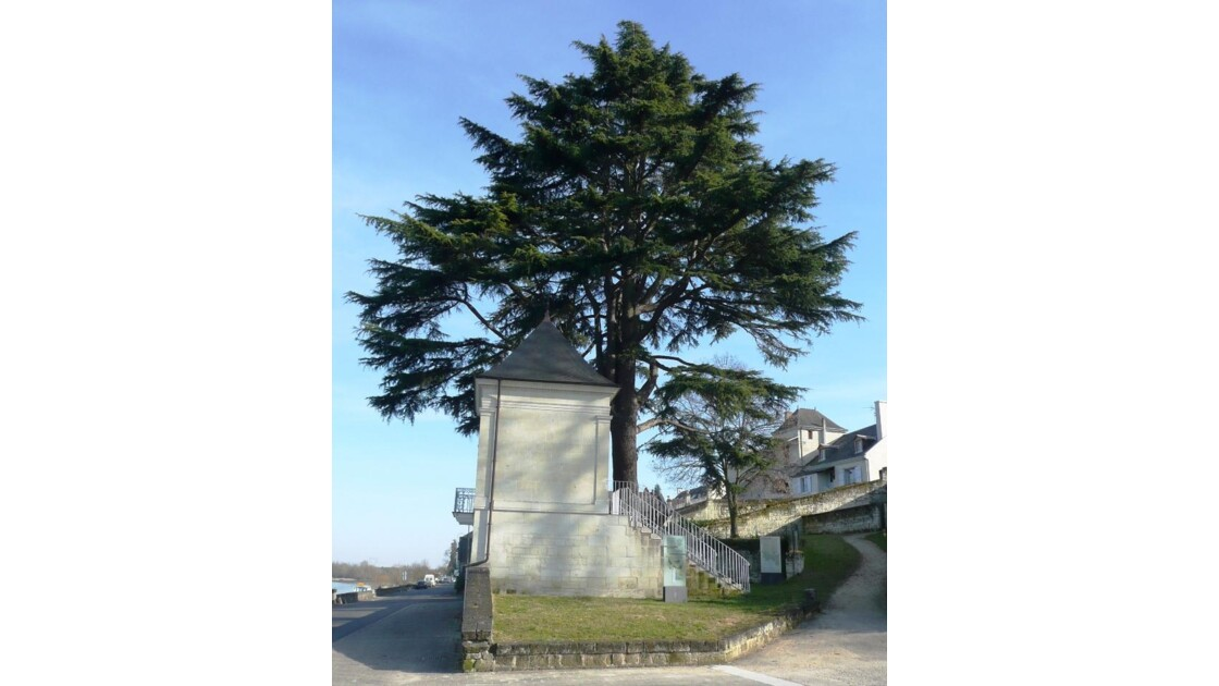France Montsoreau
