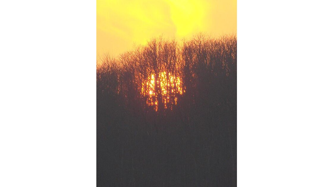 Derniers feux