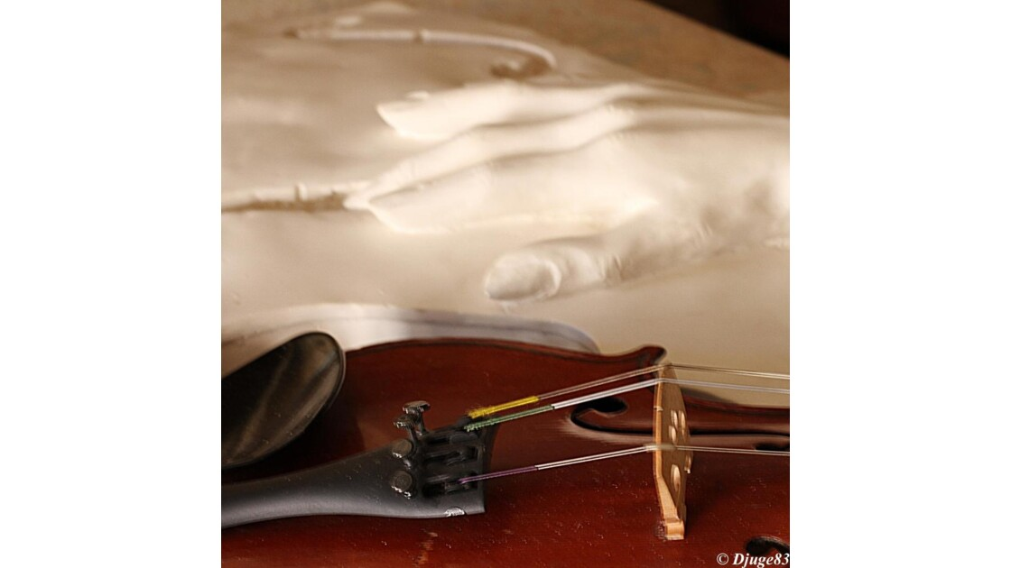 Luthier XVII