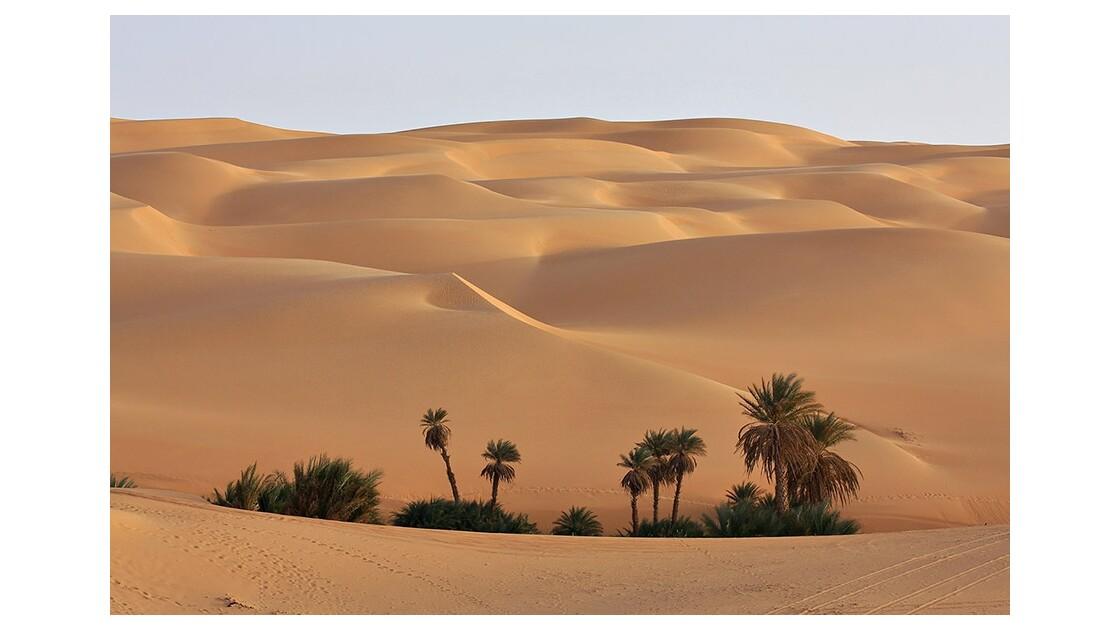 Dunes de sable dans l'Erg Oubari