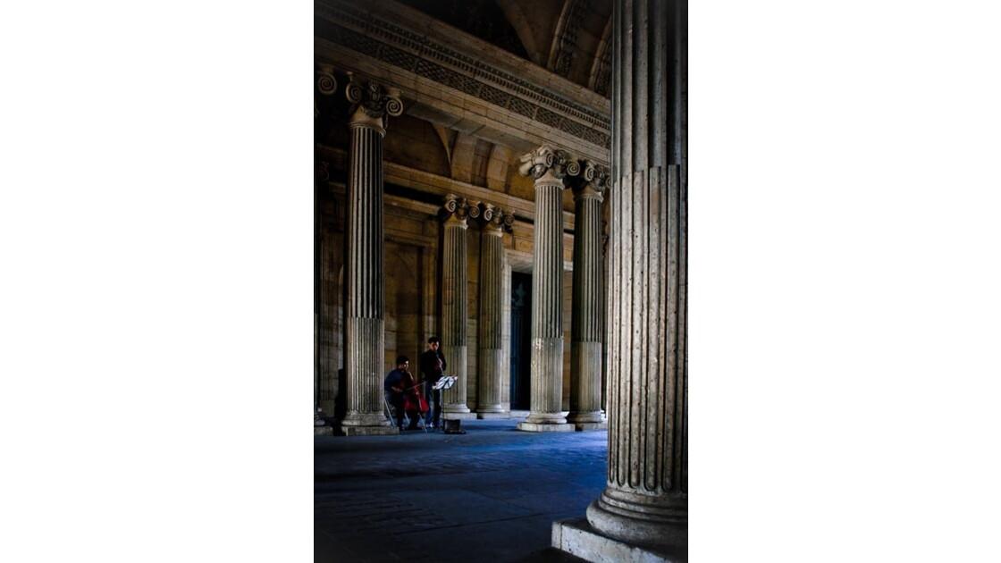 Paris Muséum #1