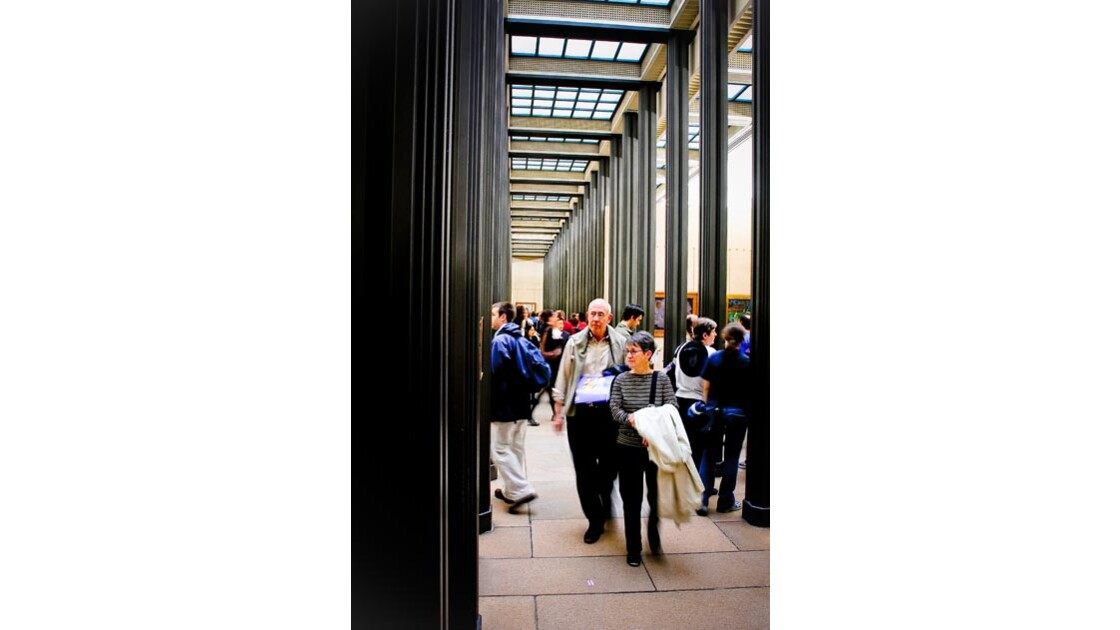Paris Muséum #3
