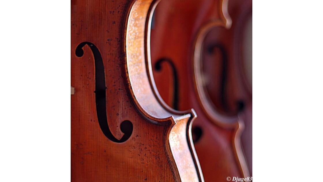 Luthier XXII