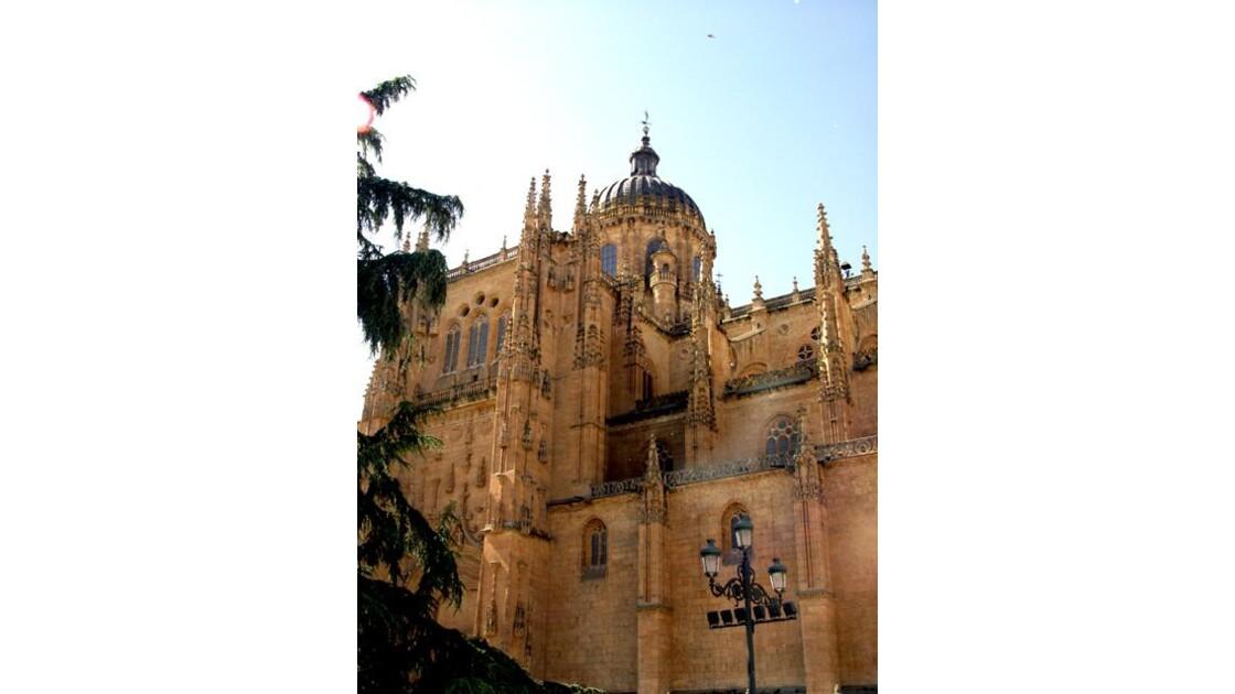 Salamanque la cathedrale