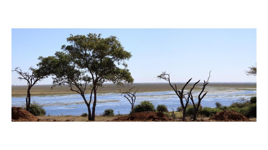 Parc de Chobe, rivière Chobe