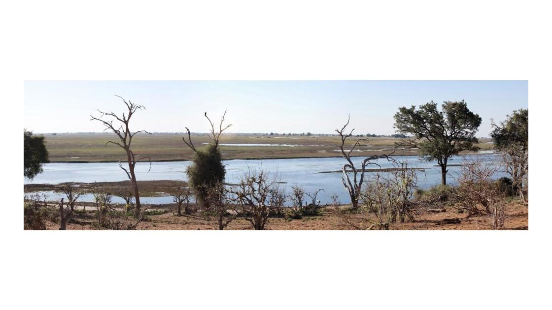 Parc et rivière Chobe