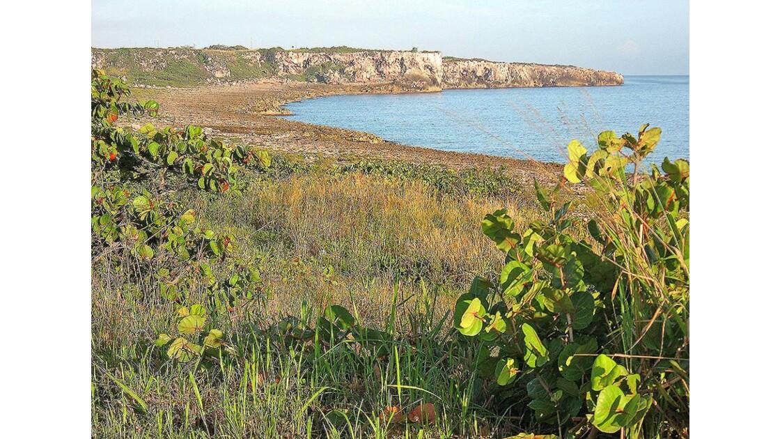 falaises près de Matanzas (oct 2007)