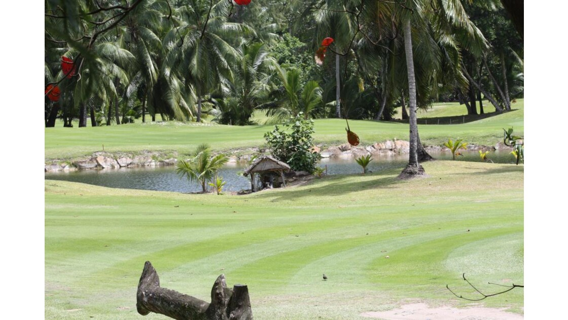 Golf_du_Lemuria_Praslin_8999.JPG