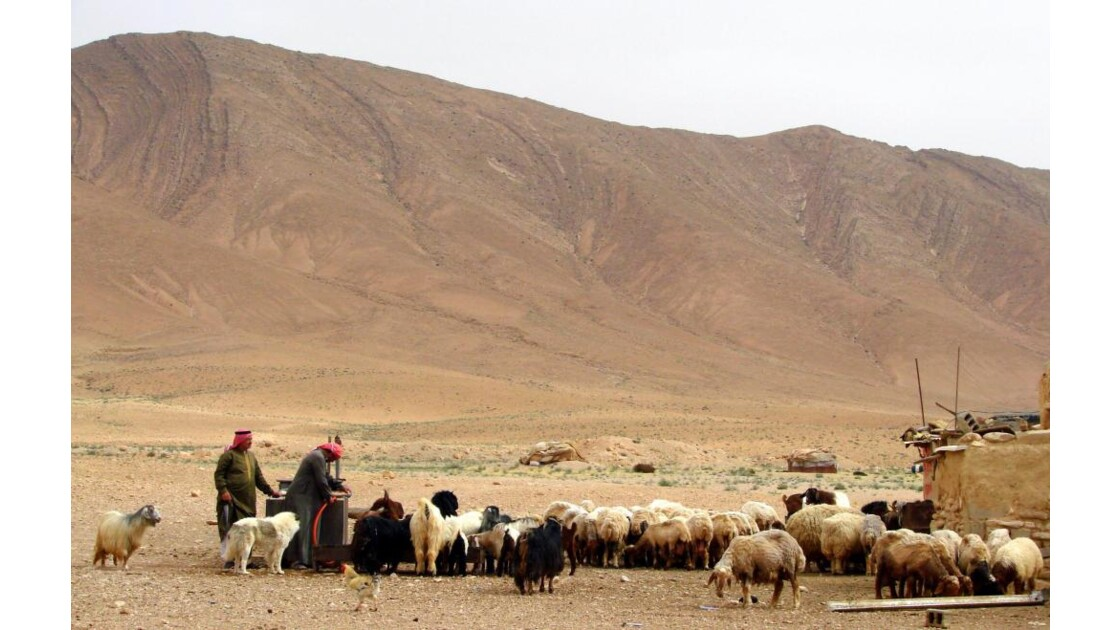 Vie pastorale