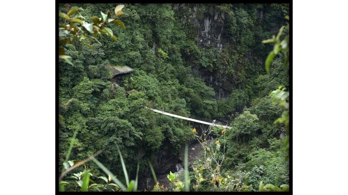 Bienvenue en Amazonie