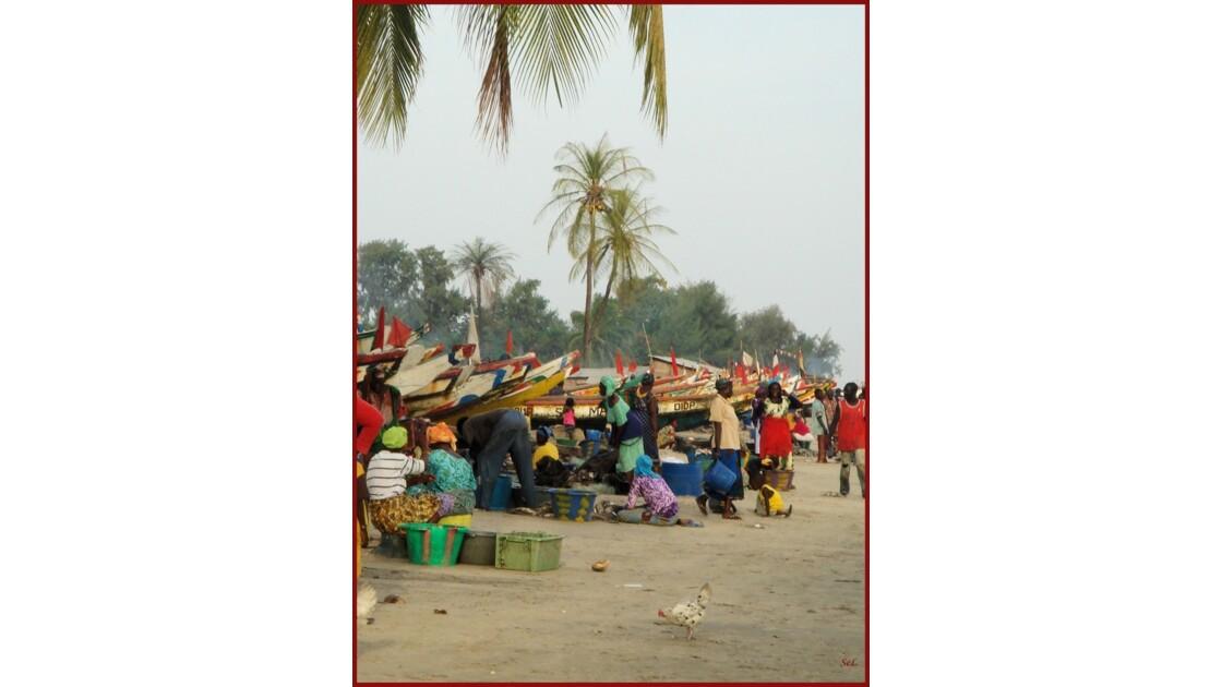 Ile_de_Diogue_Casamance.jpg